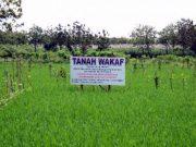Pemanfaatan Tanah Waqaf